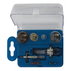 COFFRET AMPOULES H1/H7 24V