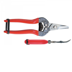 SECATEUR A FRUIT 17CM POIGNEE INCURVEE ROUGE