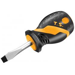 TOURNEVIS COMPACT PLAT 6,5X38MM